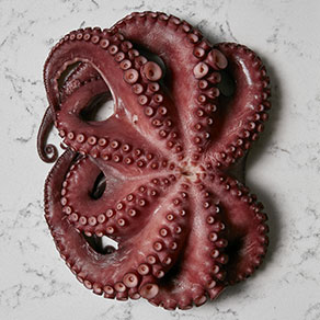 The octopus is one of the main ingredients of this traditional Sicilian dish
