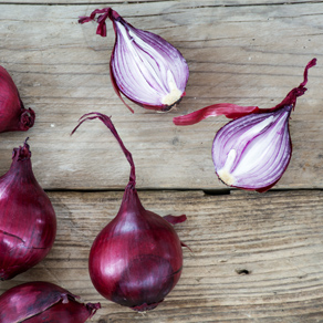 Red onion from Tropea