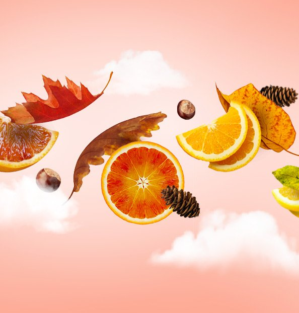 Autumn Citrus Fruits