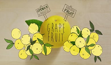 Grapefruit – Citrus Trivia
