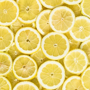 Lemon slices details