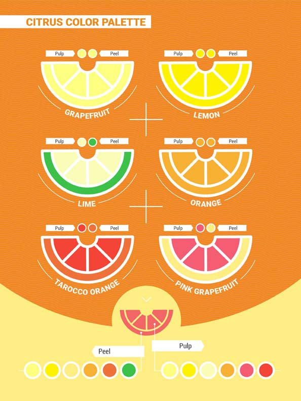 Citrus fruits color palette